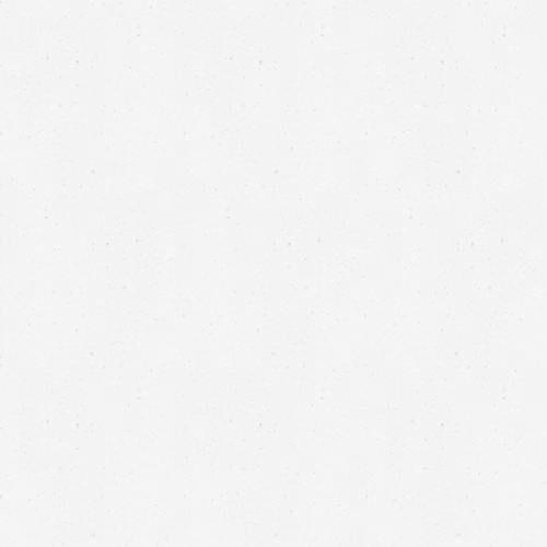S001_Perna white 02
